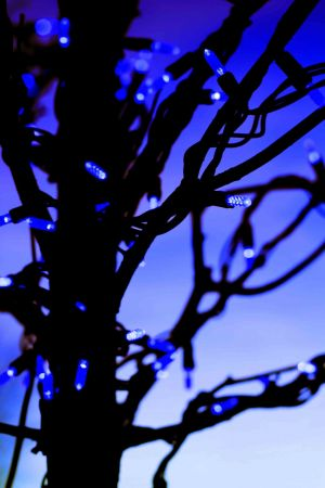 xmas lights blue