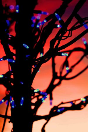xmas lights red sky